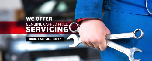 capped-price-servicing